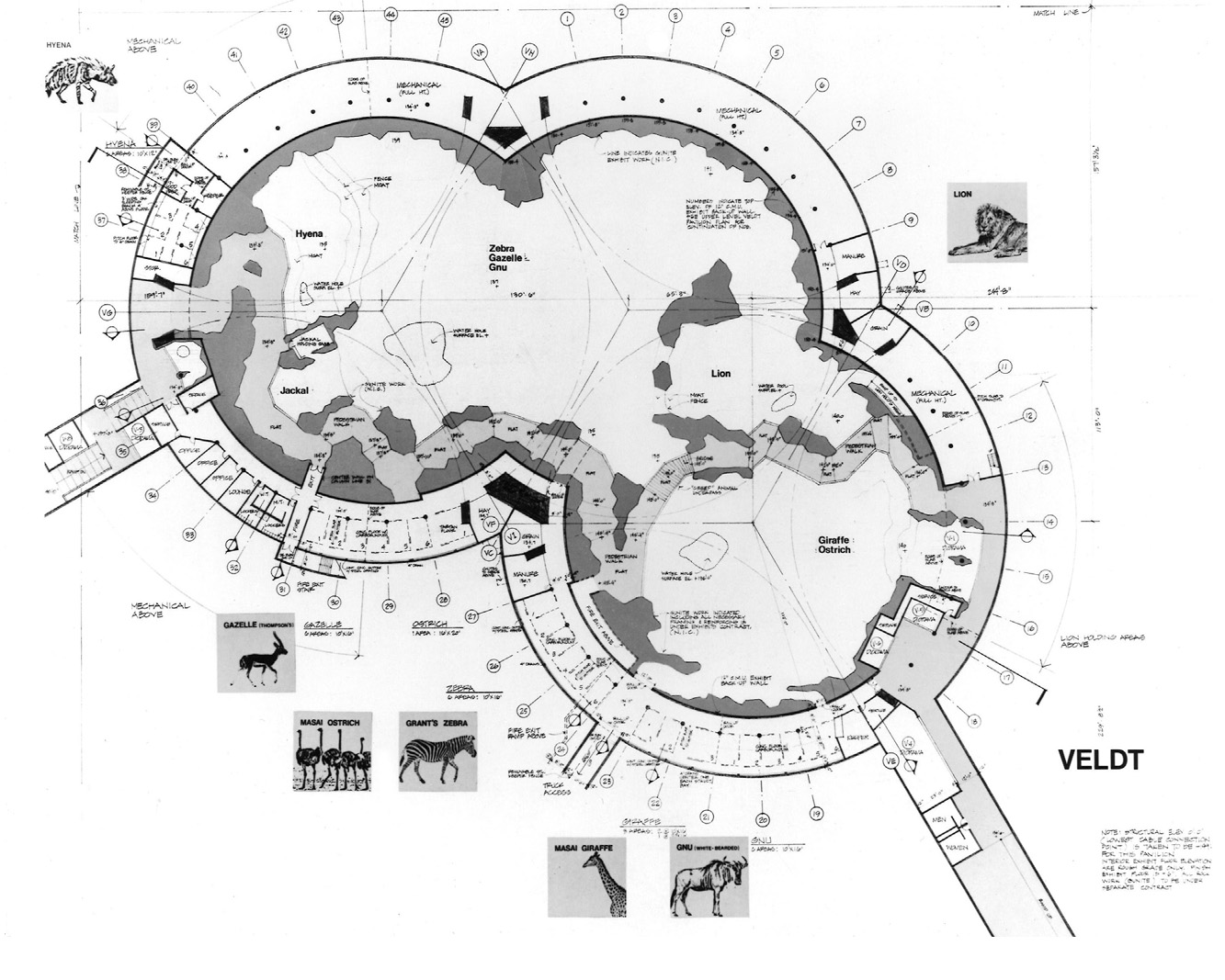 Plan detail of largest pavilion