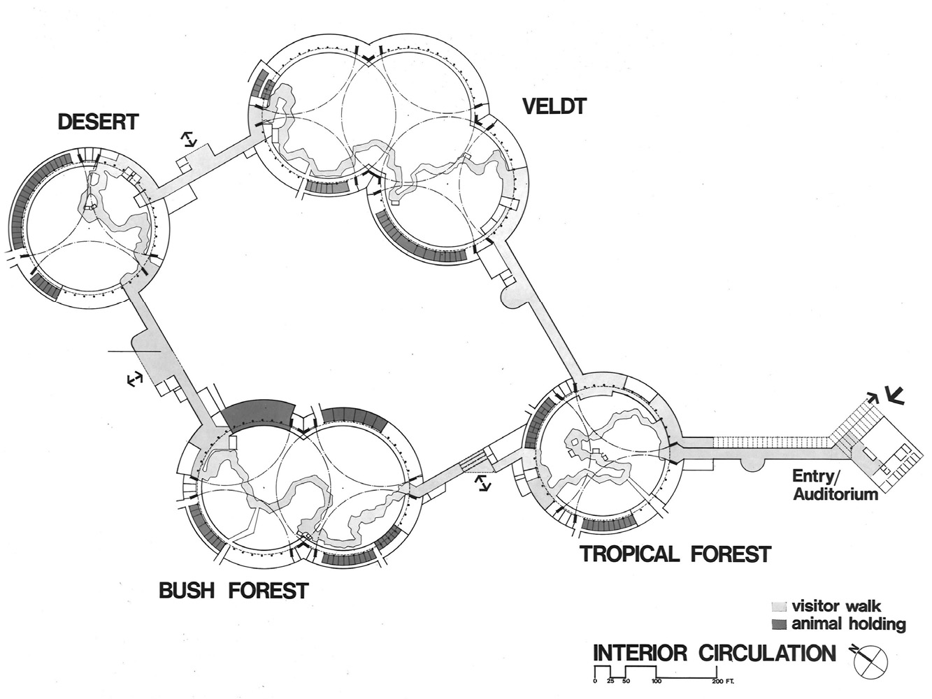 Interior Circulation